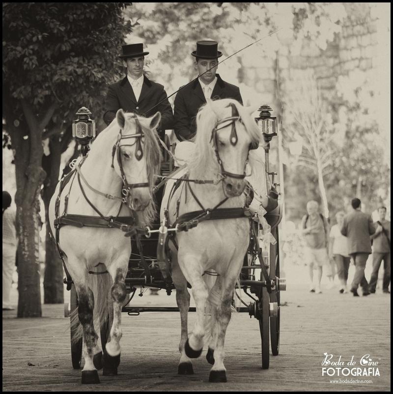 mejores-fotografos-de-boda-sevilla_016.jpg